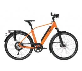 Qwic Performance Rd11 Speed, Dutch Orange